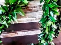 Evergreen Garland