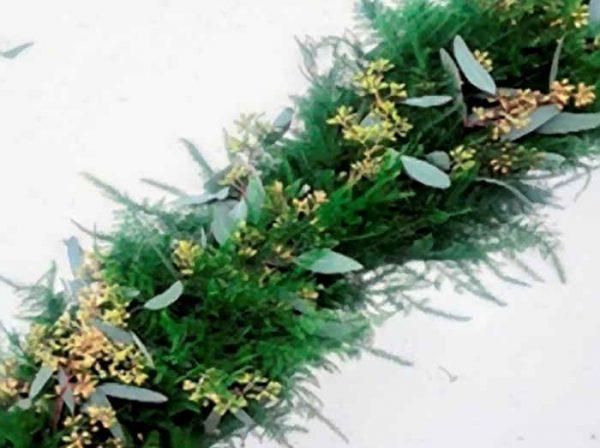 Plumosa & Seeded Euc Garland